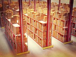 National Food Distributor   Core Vision Strategies